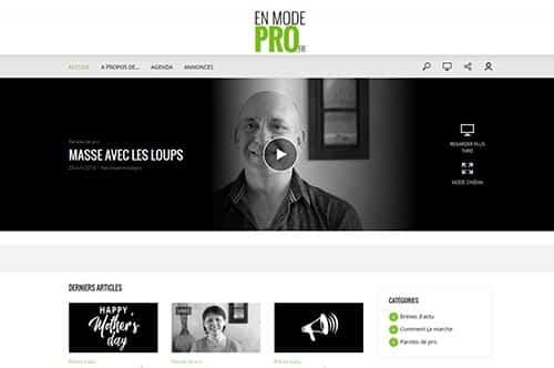 page-accueil-site-en-mode-pro.fr